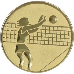 Aluminium Emblem/ Volleyball