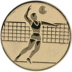 Aluminium Emblem/ Volleyball